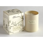 Fig Valloires Candle in Glass