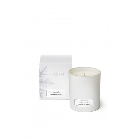Clementine - Scented Candle