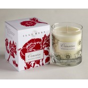 Clementine Scented Candle in Glass