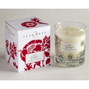 Fig and Ginger Scented Candle in Glass
