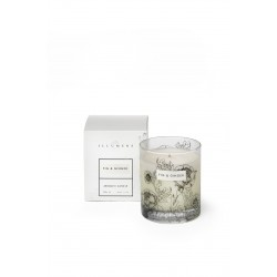 Fig & Ginger - Scented Candle