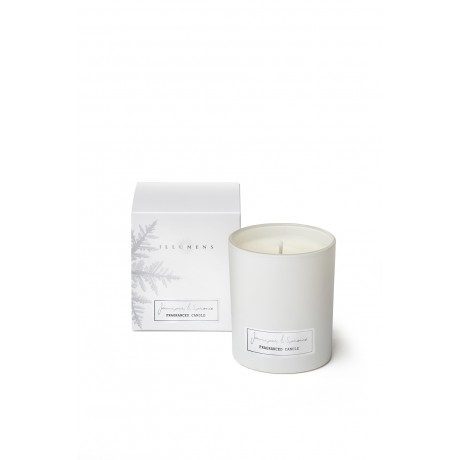 Juniper & Spruce - Scented Candle