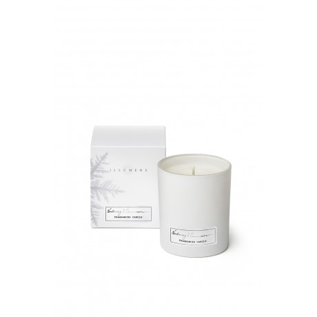 Nutmeg & Cinnamon - Scented Candle