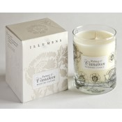 Nutmeg & Cinnamon Winter Scented Candle in Glass